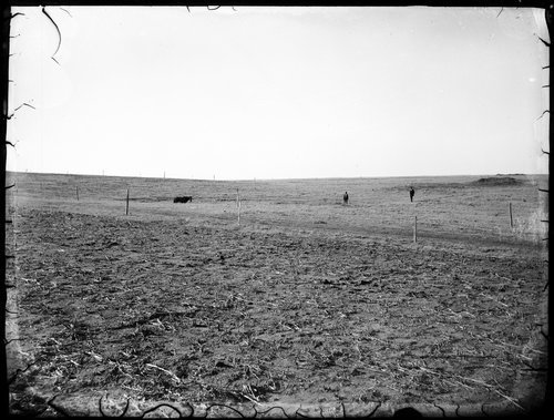 Field, Finney County, Kansas - Page