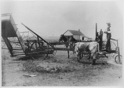 Header-barge, Gray County, Kansas - Page