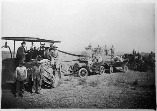 Harvesting wheat, Gray County, Kansas - Page