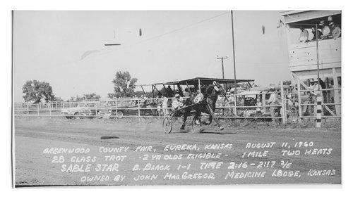 Sulky Racing, Eureka, Kansas - Page