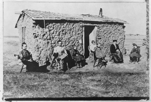 Rhees Singley's sod house - Page