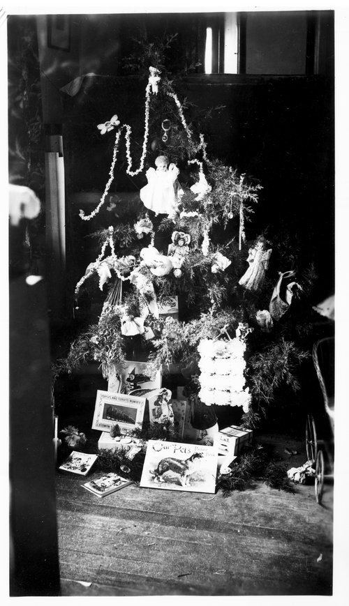 Christmas tree, L.C. Walbridge Ranch, Russell County, Kansas - Page