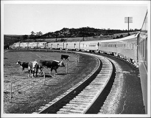 Atchison, Topeka & Santa Fe Railway Company's chief, New Mexico - Page