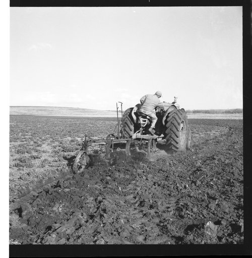 Plowing a field in Sheridan County, Kansas - Page