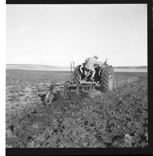 Plowing a field in Sheridan County, Kansas - Page