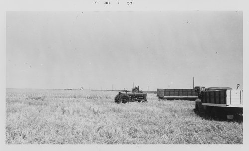 Farm scene, Sheridan County, Kansas - Page