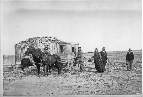 Mrs. Stout delivering mail in Studley, Kansas - Page