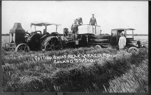 Photograph showing wheat harvest near Larned, between 1910 and 1930