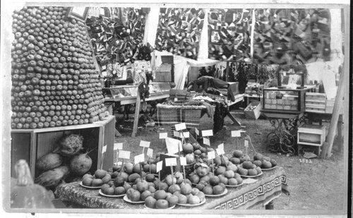 Fairgrounds, Finney County Fair, Kansas - Page