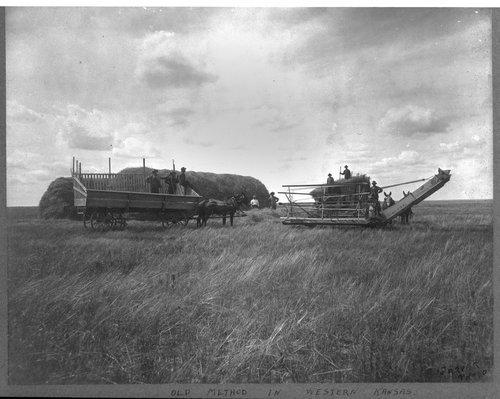 Harvesting, Larned, Kansas - Page