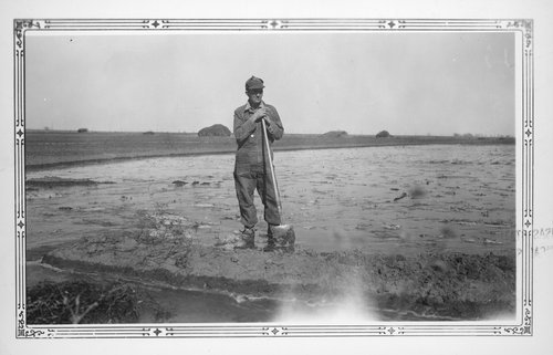Irrigating alfalfa, Finney County, Kansas - Page