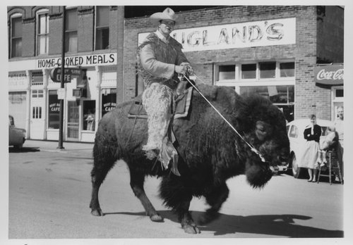 Dick Bishop riding a bison (buffalo), Council Grove, Kansas - Page