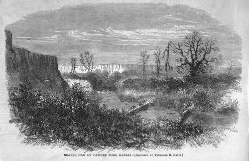 Beaver dam, Pawnee County, Kansas - Page