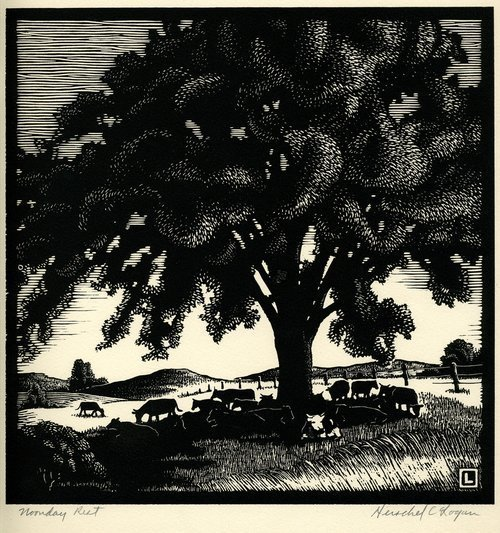 Noonday rest: A black ink on rag paper woodcut showing cows grazing and resting under a tree, drawn by Hershel C. Logan.