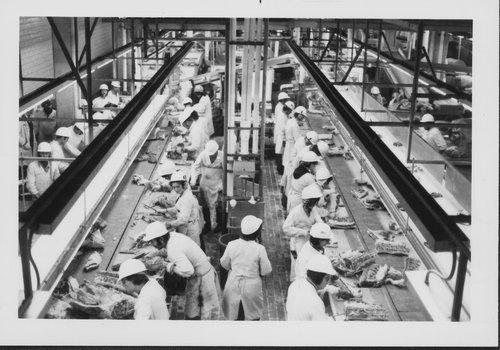 Iowa Beef Processors, Inc., Emporia, Kansas - Page