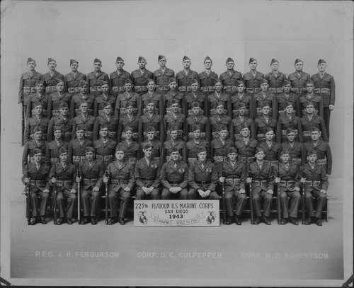 229th Platoon U.S. Marine Corps in San Diego, California - Page