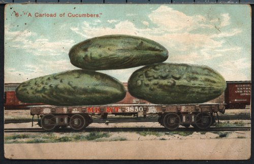 A carload of cucumbers - Page