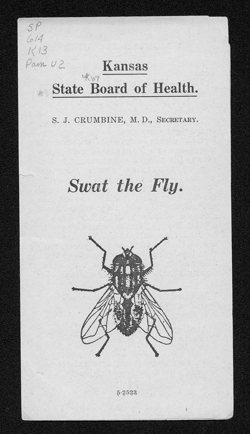 Swat the fly - Page