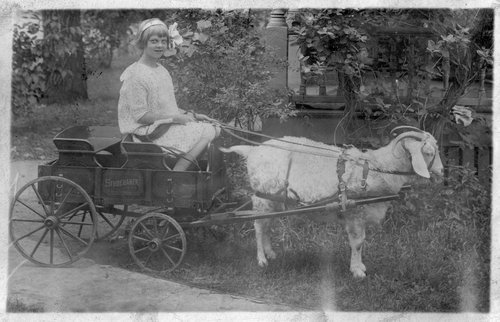 Goat drawn wagon, Jefferson County, Kansas - Page