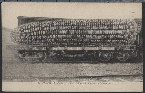 Car load of Kansas corn - Page