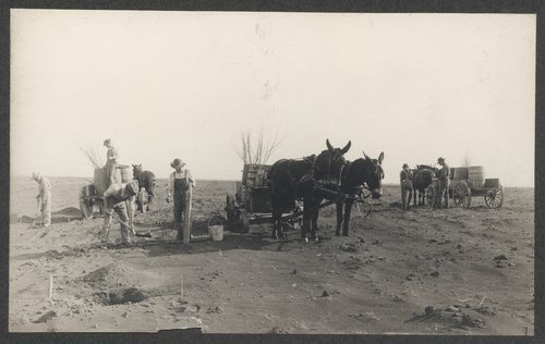 Starting an orchard at the Agricultural Experiment Station at Fort Hays, Kansas - Page