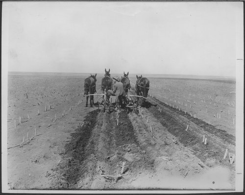 Cultivating furrows in Kansas - Page