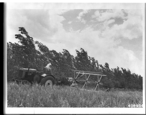 Harvesting alfalfa in Kansas - Page