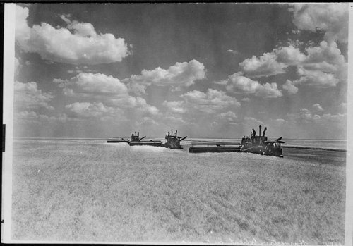 Combining wheat in Kansas - Page