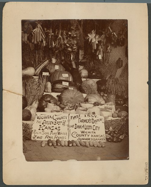 Farmer's display, Wichita County Fair, Kansas - Page