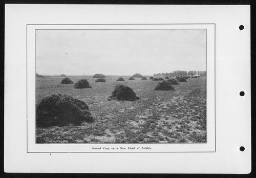 Souvenir, Hamilton County and Syracuse, Kansas - Page