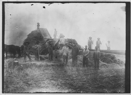 C. R. Voth and crew threshing in Marion County, Kansas - Page