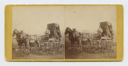 Photographic outfit. 309 miles west of St. Louis, Missouri - Page