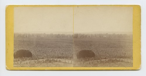 Tonganoxie farm, on branch road between Leavenworth and Lawrence, Kansas - Page