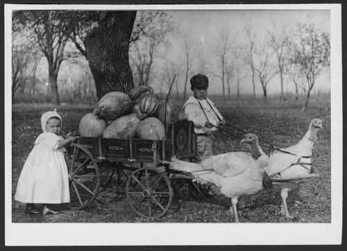 Children's wagon pulled by turkeys - Page