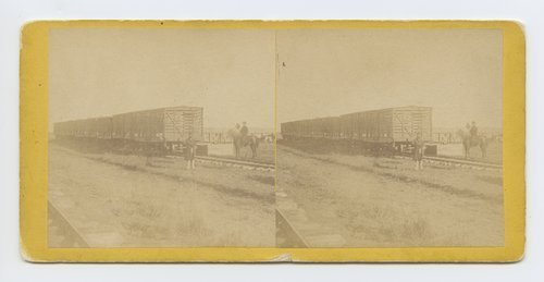 Loading cattle at MacCoy's [i.e. McCoy's] stock yard, Abilene, Kansas. 447 miles west of St. Louis Mo. - Page
