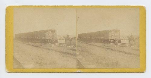 Loading cattle at MacCoy's [i.e. McCoy's] stock yard, Abilene, Kansas. 447 miles west of St. Louis Mo. - Page