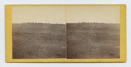 Prairie dog town, Abilene, Kansas. 447 miles west of St. Louis Mo. - Page