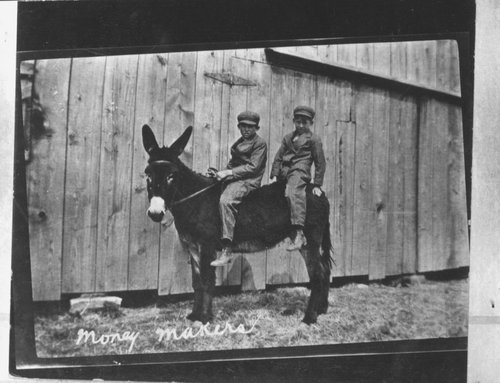 Two boys riding a donkey - Page