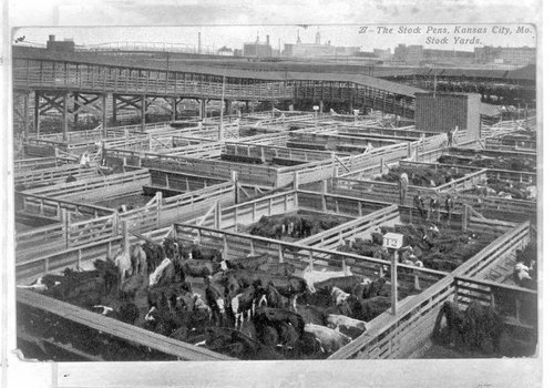 Kansas City Stockyards in Kansas City, Missouri - Page