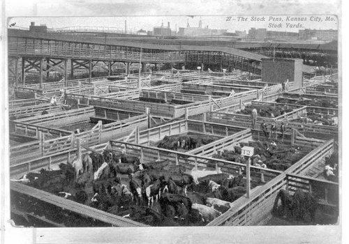 Kansas City Stockyards in Kansas City, Missouri - Page