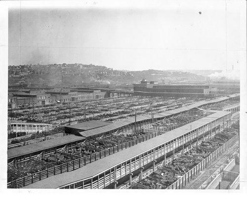 Kansas City Stockyards, Kansas City, Missouri - Page