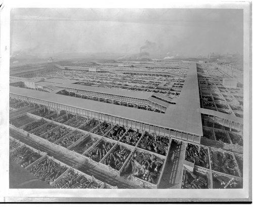 Kansas City Stockyards, Kansas City Missouri - Page