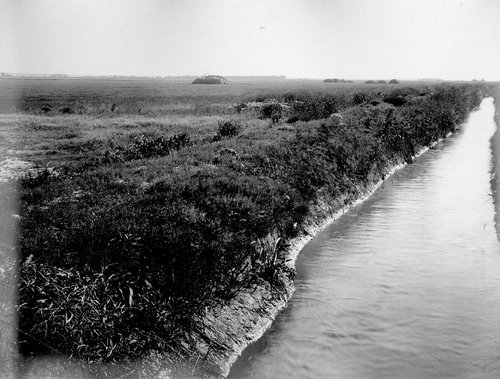 Alfalfa field and irrigation canal in Finney County, Kansas - Page
