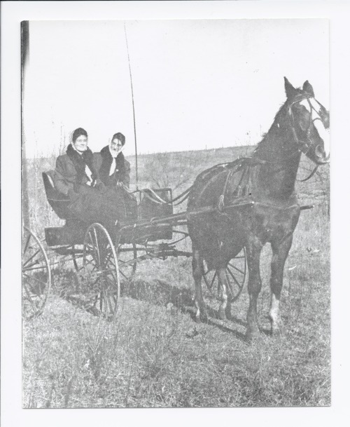 Grace Eversole Hartzell and Edna Hartzell Salley in a buggy, Rossville, Kansas - Page