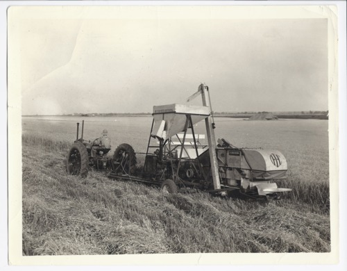 Harvesting near Rossville, Kansas - Page