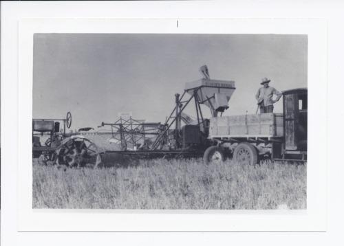 Joe Penaz hauling wheat, Rossville, Kansas - Page