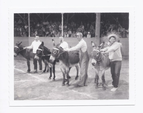 Lions donkey ball, Rossville, Kansas - Page