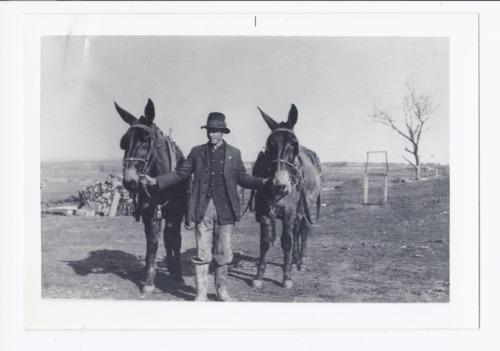 Albert Martinek hauling wood, Rossville, Kansas - Page
