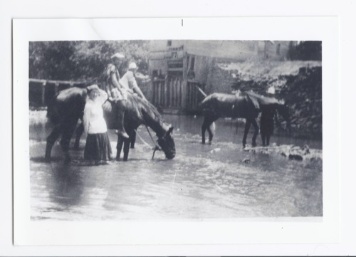 People and horses standing in water, Rossville, Kansas - Page