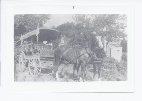 Horse and buggy, Rossville, Kansas - Page